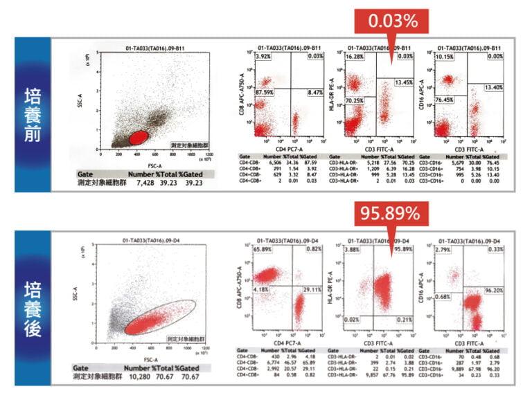 癌症細胞治療是將病患血液裡微量活化T細胞,經實驗室培養成高濃度的活化T細胞,在回輸病患體內毒殺癌細胞